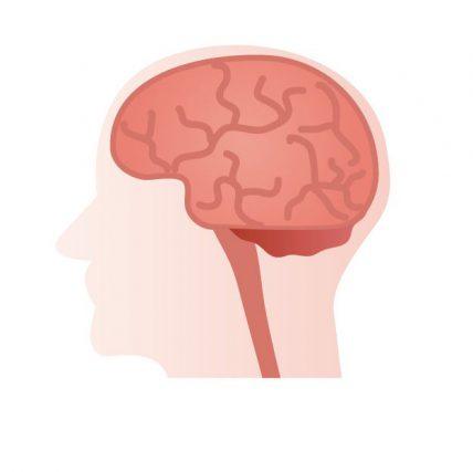 こころの病 脳の興奮