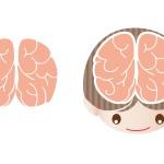 脳 神経 チック